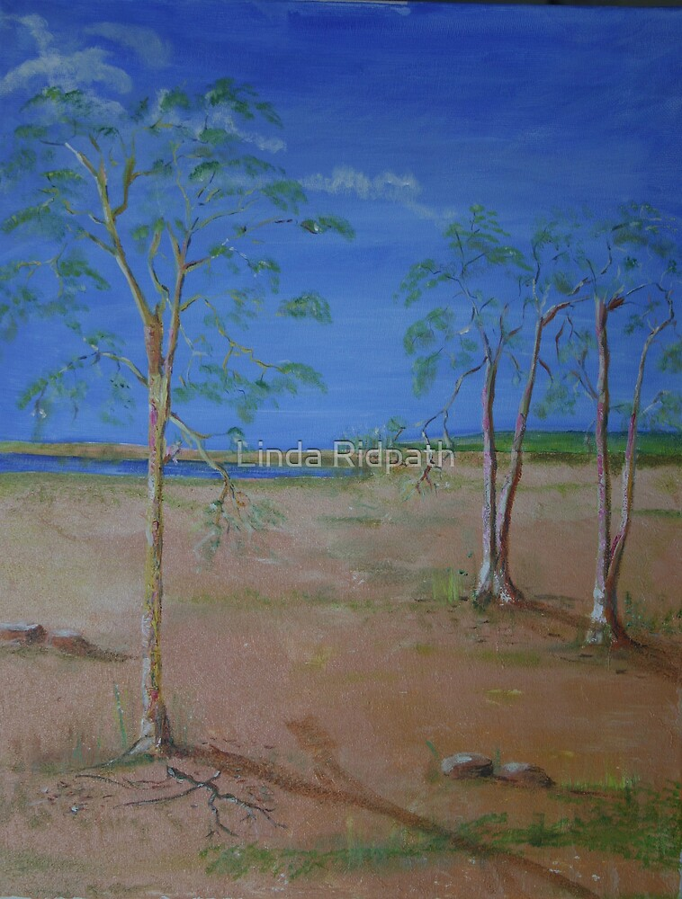 Gum Trees by Linda Ridpath