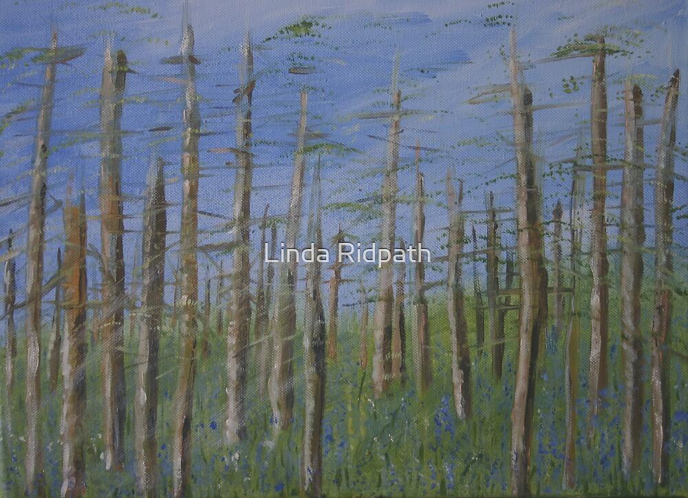 Distress! by Linda Ridpath