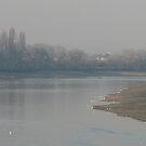 Low Tide at Putney by Cleburnus
