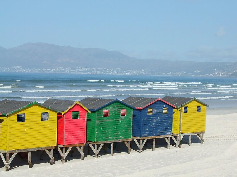 colors on a beach by Douglas Freeman