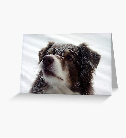 Snowface Greeting Card