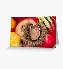 pumpkins and curly chestnut Greeting Card