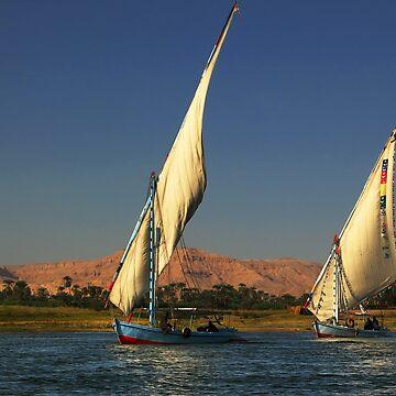 Fishing on Nile by palinchak