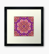 Rainbow Matrix Mandala Framed Print