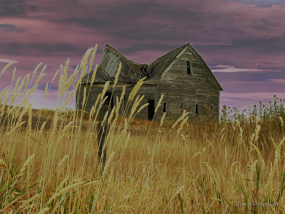 Purple Sky by Diane Peterson
