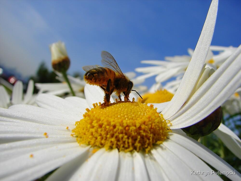 Busy  Bee by Kathryn Potempski