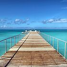 Paradise Pier by David Alexander Elder