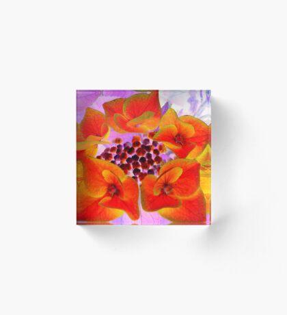 Glowing Hydrangea Acrylic Block