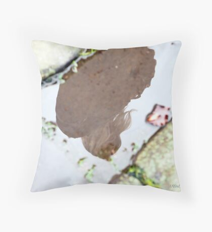 Pale Reflections Throw Pillow
