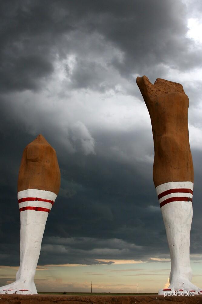 Nice Legs by patticooke
