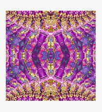 Purple Royale Fractals Geometry Photographic Print