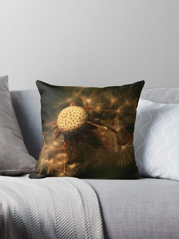 Spring dandelion by bared