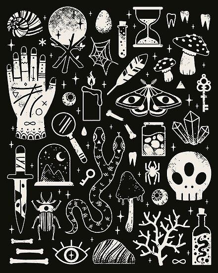 Kuriositäten: Bone Black von Camille Chew