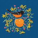 Baltimore Oriole by cmanning