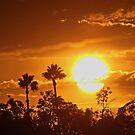 Golden Sky(Cielo de Oro) by Chet  King