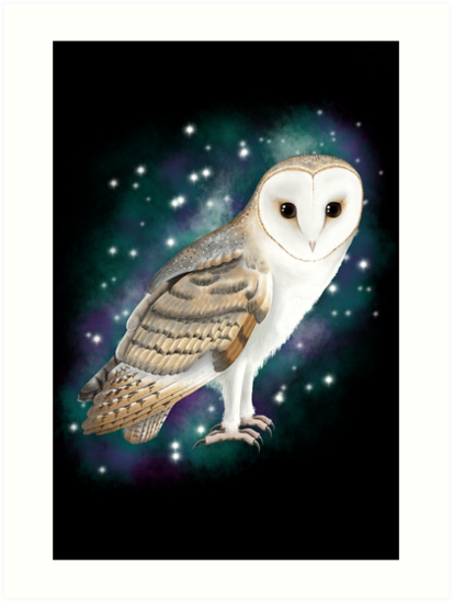 Starry Starry Barn Owl by Plumicorns