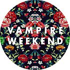 Vampire Weekend Mirrored by tooweaktoramble