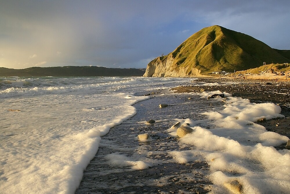 Taylors Bay by Nigel Davey