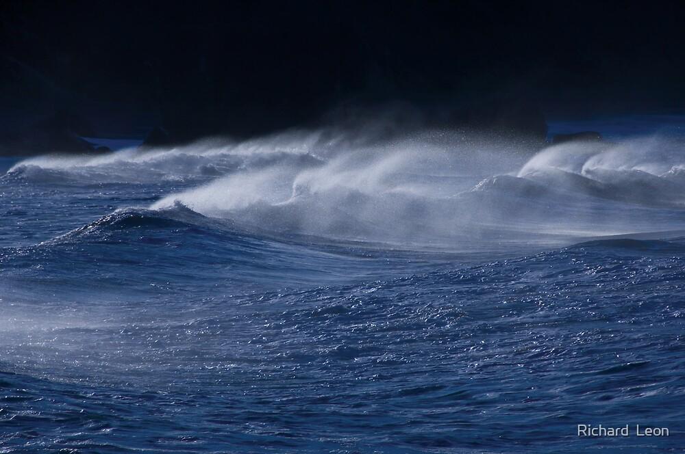 Ocean Waves  •  Goat Rock, California by Richard  Leon