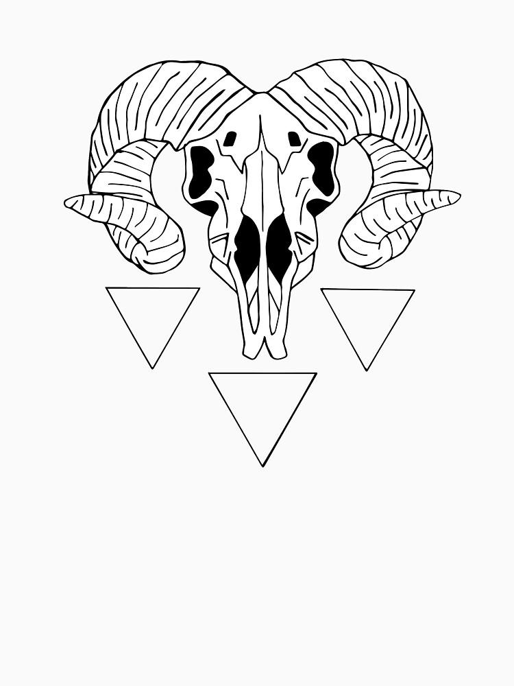 Ram Skull Diagram