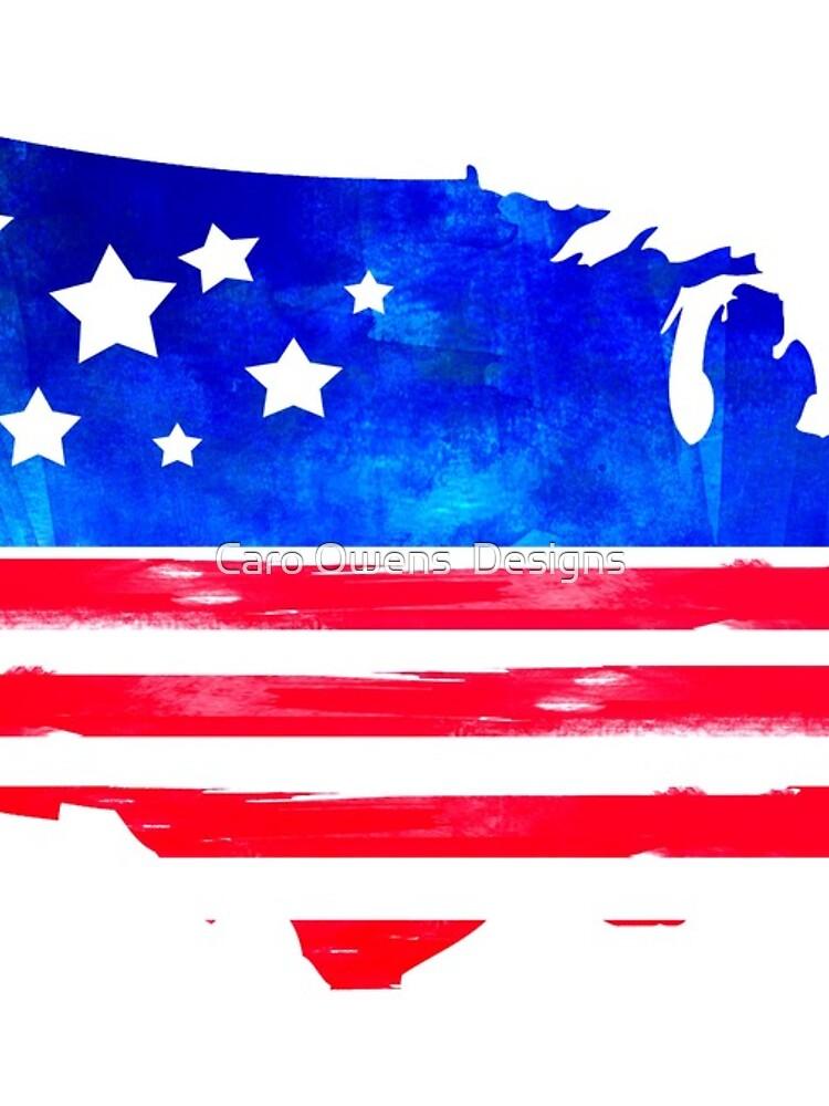 Estados Unidos de caroowens
