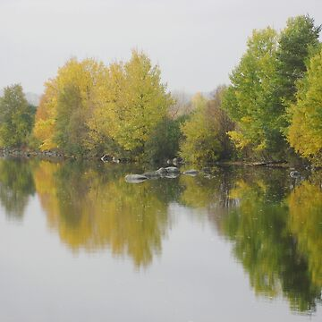 Autumn, colourful trees reflection in a lake by ibphotos