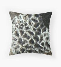 PATERNS OF NATURE Throw Pillow