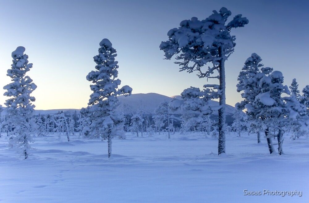 Cold winter day by IB Photography