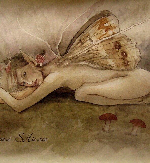 fairy by Suryani Shinta