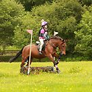 Mini round at Hunter Trials, 4th June 2017 by Suzy Shipman