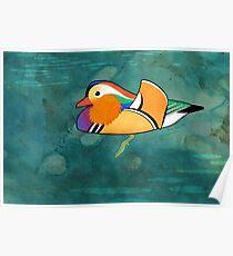 Mandarin Duck (Aix galericulata) Poster