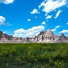 Badlands by Luann wilslef