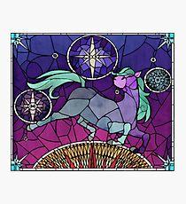 Mosaic Equine  Photographic Print