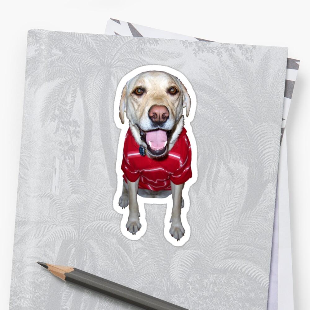 Glücklicher gelber Labrador-Labrador, der ein Polo schaukelt Sticker