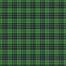 MacDonald Lord of the Isles A Original Scottish Tartan by Vickie Emms