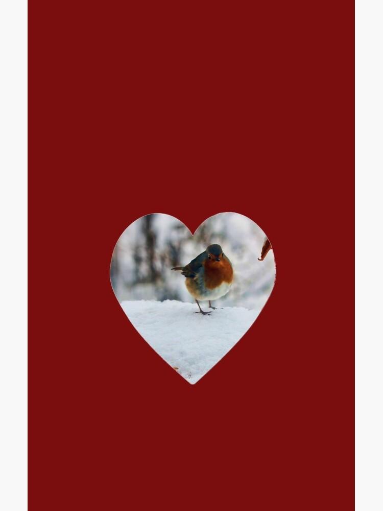 Robin Redbreast  by valzart