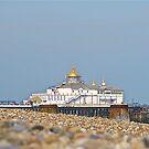 Eastbourne Pier by John Thurgood