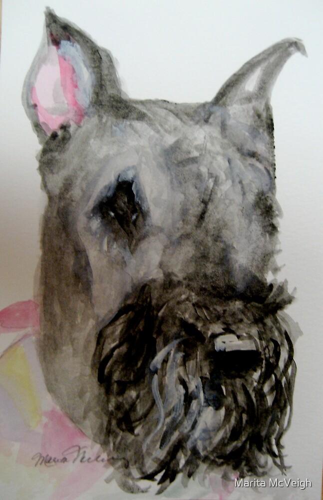 Tasha by Marita McVeigh