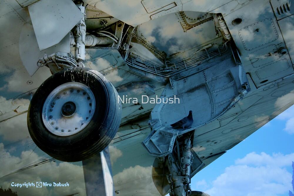 Wheel of PEACE by Nira Dabush