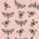 Pink moths pattern. by smalldrawing