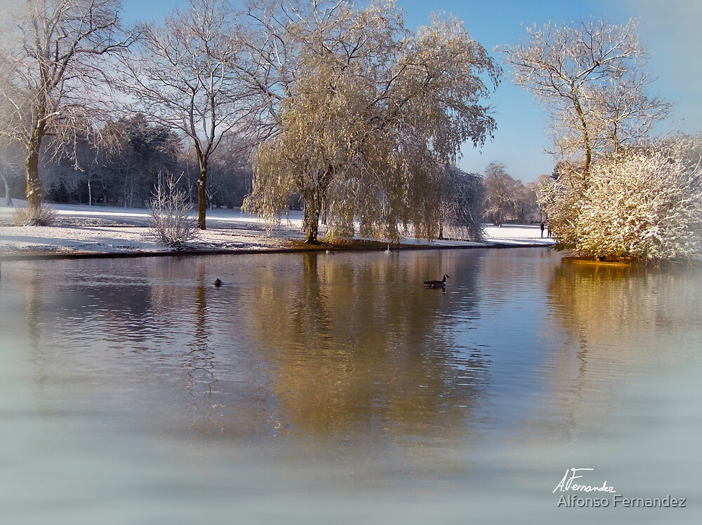 Cannon Hill Park by Alfonso Fernandez