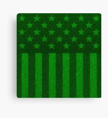 The grass and stripes Canvas Print