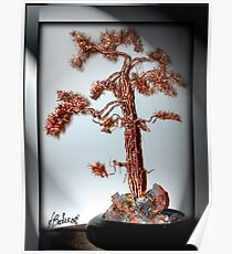 Old Pine Tree Poster