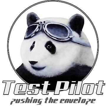 Test pilot by mairundmair