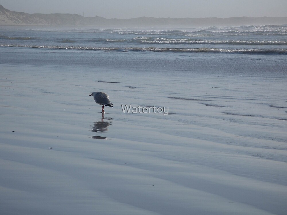 The Loner by Watertoy