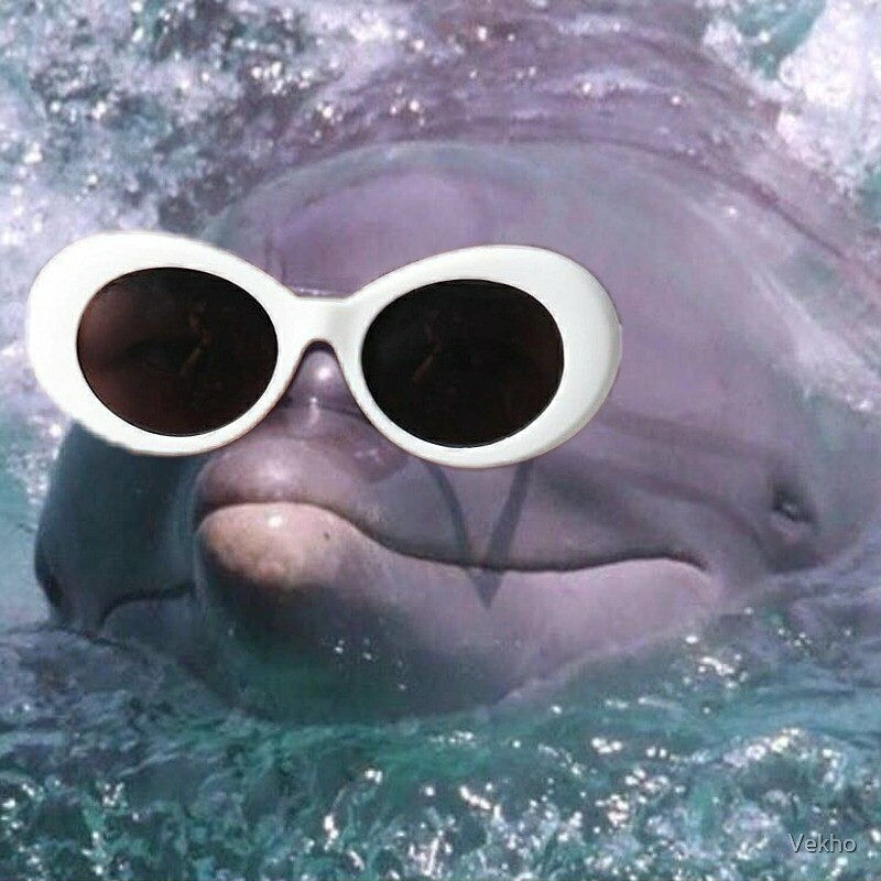 f124793f3ac8d Dolphin With Clout Goggles