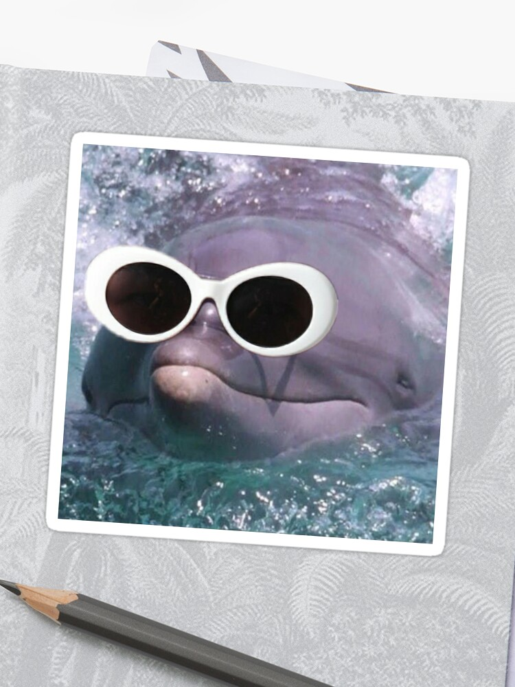 fa2c4b0092cc4 Dolphin With Clout Goggles
