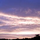 Evening Clouds #1 by rebecca smith