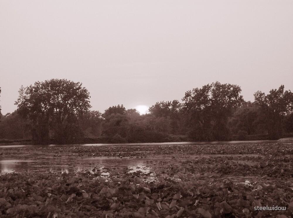 Perfect Lake View 5 by steelwidow