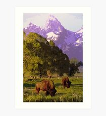 Wyoming Countryside Art Print